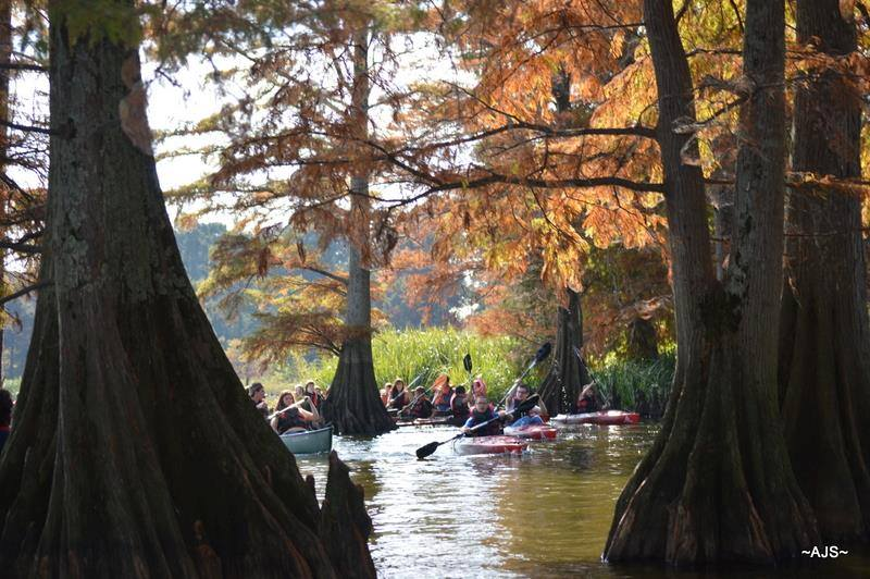 Friends of Reelfoot Lake State Park Host Event